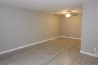 Photo 20: 56 Penedo Place in Calgary: Penbrooke Meadows Detached for sale : MLS®# A1113774