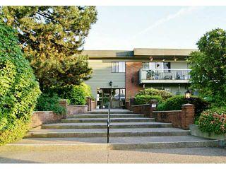 "Photo 14: 214 2600 E 49TH Avenue in Vancouver: Killarney VE Condo for sale in ""SOUTHWINDS"" (Vancouver East)  : MLS®# V1068317"