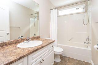 Photo 25: 4020 Rainbow St in Saanich: SE High Quadra House for sale (Saanich East)  : MLS®# 882323