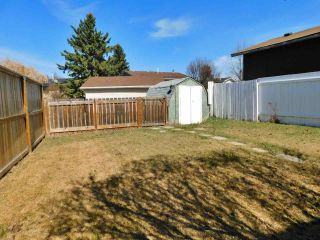 Photo 35: 40 Birch Drive: Gibbons House for sale : MLS®# E4239751