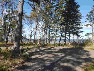 Photo 1: LOTS Sand Bank Road in Victoria Vale: 400-Annapolis County Vacant Land for sale (Annapolis Valley)  : MLS®# 202103631