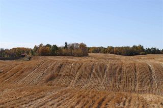 Photo 1: TWP 495 RR 232: Rural Leduc County Rural Land/Vacant Lot for sale : MLS®# E4216268