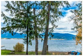 Photo 33: 1546 Blind Bay Road in Blind Bay: Vacant Land for sale : MLS®# 10125568