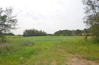 Photo 4: Range Rd 180 & Township Rd 552: Rural Lamont County Rural Land/Vacant Lot for sale : MLS®# E4258168