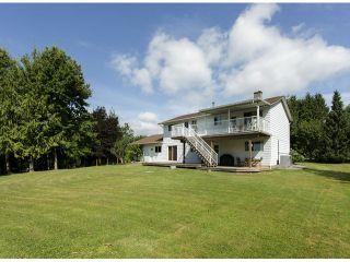 Photo 18: 29086 BUCHANAN Avenue in Abbotsford: Bradner House for sale : MLS®# F1418255