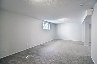 Photo 30: 253 Elgin Way SE in Calgary: McKenzie Towne Detached for sale : MLS®# A1087799