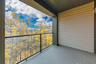 Photo 17: 208 45 Aspenmont Heights SW in Calgary: Aspen Woods Apartment for sale : MLS®# A1075895