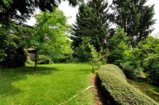 """Photo 19: 115 7377 SALISBURY Avenue in Burnaby: Highgate Condo for sale in """"THE BERESFORD"""" (Burnaby South)  : MLS®# R2082419"""