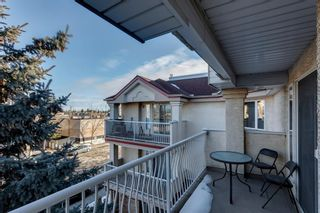 Photo 15: 313 1723 35 Street SE in Calgary: Albert Park/Radisson Heights Apartment for sale : MLS®# A1061894