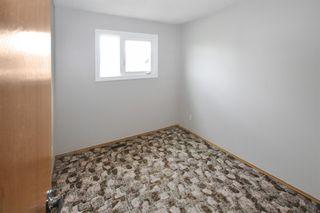 Photo 19: 14027 23 Street in Edmonton: Zone 35 House for sale : MLS®# E4247029