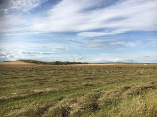 Photo 3: HWY 39 RR 34: Rural Leduc County Rural Land/Vacant Lot for sale : MLS®# E4235214
