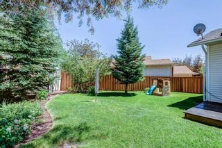 Photo 26: 339 Hawkhill Place NW in Calgary: Hawkwood Detached for sale : MLS®# A1125756