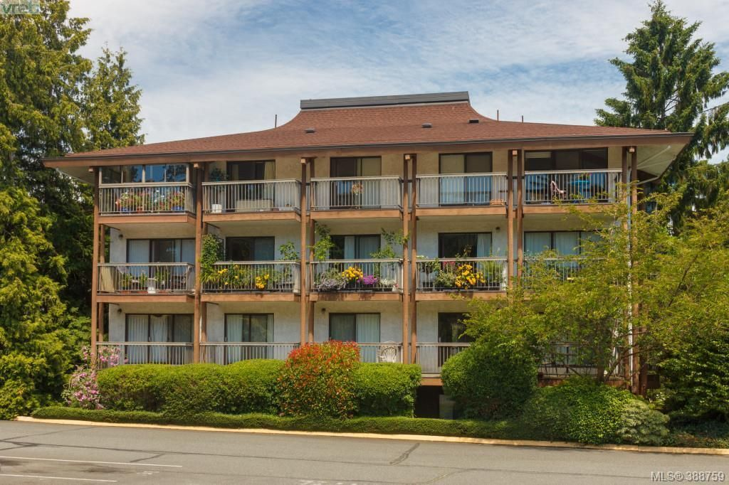 Main Photo: 217 1005 McKenzie Ave in VICTORIA: SE Quadra Condo for sale (Saanich East)  : MLS®# 781255