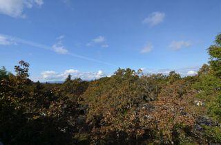 Photo 34: 313 3962 Cedar Hill Rd in : SE Mt Doug Condo for sale (Saanich East)  : MLS®# 858783