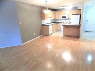 Photo 11: 104 8909 100 Street in Edmonton: Zone 15 Condo for sale : MLS®# E4246923
