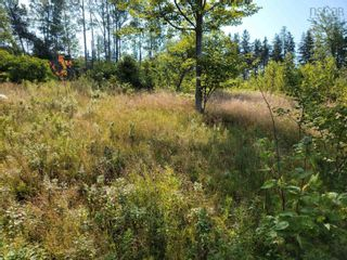 Photo 9: Kempt Head Road in Ross Ferry: 207-C. B. County Vacant Land for sale (Cape Breton)  : MLS®# 202121661