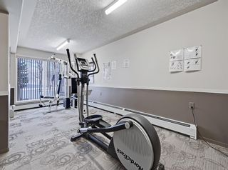 Photo 26: 213 5000 Somervale Court SW in Calgary: Somerset Apartment for sale : MLS®# A1128519