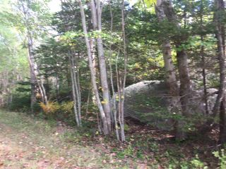 Photo 4: Lot Central Port Mouton in Central Port Mouton: 406-Queens County Vacant Land for sale (South Shore)  : MLS®# 201925220