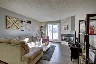 Photo 12: 2011 2011 Edenwold Heights NW in Calgary: Edgemont Apartment for sale : MLS®# A1091382