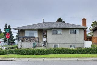 Photo 49: 1839 38 Street SE in Calgary: Forest Lawn Detached for sale : MLS®# A1147912