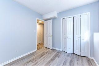 Photo 26: 17407 91 Street in Edmonton: Zone 28 House for sale : MLS®# E4260653