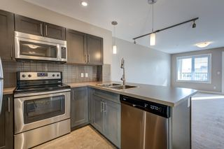 Photo 8: 213 1031 173 ST in Edmonton: Zone 56 Condo for sale : MLS®# E4265920