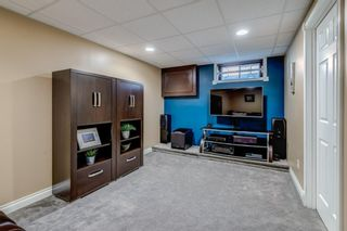 Photo 24: 339 Hawkhill Place NW in Calgary: Hawkwood Detached for sale : MLS®# A1125756