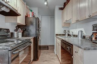 Photo 11: 203 1240 12 Avenue SW in Calgary: Beltline Apartment for sale : MLS®# A1037348