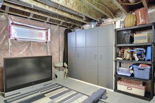 Photo 46: 35 EDINBURGH Court N: St. Albert House for sale : MLS®# E4255230