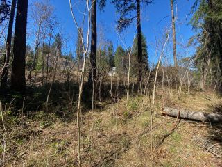 Photo 15: Lot L VIEW RIDGE ROAD in Nelson: Vacant Land for sale : MLS®# 2460797