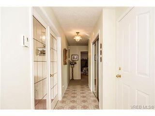 Photo 3: 11 709 Luscombe Pl in VICTORIA: Es Esquimalt House for sale (Esquimalt)  : MLS®# 690941