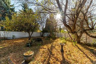 Photo 26: 59 GRANDORA Crescent: St. Albert House for sale : MLS®# E4266435