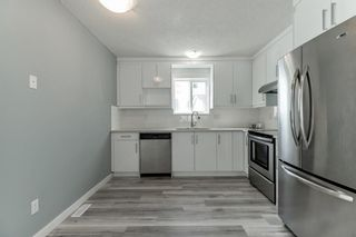 Photo 13: 23 Erin Meadows Court SE in Calgary: Erin Woods Detached for sale : MLS®# A1146245