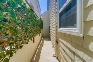 Photo 46: MISSION BEACH House for sale : 2 bedrooms : 801 Whiting Ct in San Diego