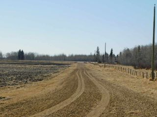 Photo 4: Hwy 28 North of Twp 570: Rural Sturgeon County Rural Land/Vacant Lot for sale : MLS®# E4238709
