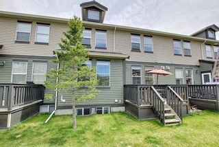 Photo 46: 3803 1001 8 Street: Airdrie Row/Townhouse for sale : MLS®# A1105310