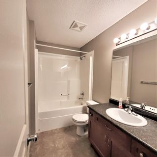 Photo 28: 8353 SHASKE Crescent in Edmonton: Zone 14 House for sale : MLS®# E4262275