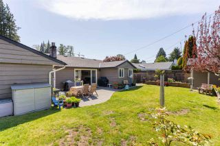 """Photo 31: 1286 MCBRIDE Street in North Vancouver: Norgate House for sale in """"Norgate"""" : MLS®# R2577564"""