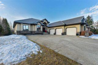 Photo 3: 231 WILSON Lane in Edmonton: Zone 22 House for sale : MLS®# E4234037