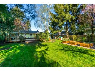 Photo 19: 5398 208 Street in Langley: Langley City House for sale : MLS®# R2051939