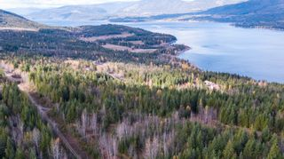 Photo 11: S/W 1/4 IVY ROAD in KAMLOOPS: Eagle Bay Land Only for sale (Shuswap Lake)  : MLS®# 156633