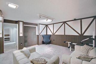 Photo 26: 47 Falworth Place NE in Calgary: Falconridge Detached for sale : MLS®# A1139441