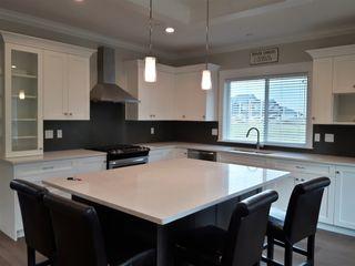 Photo 7: 10080 247B STREET in Maple Ridge: Albion House for sale : MLS®# R2104852