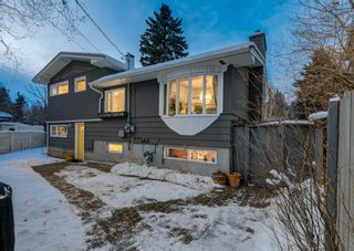 Photo 40: 132 CHINOOK Drive SW in Calgary: Chinook Park Detached for sale : MLS®# A1071205