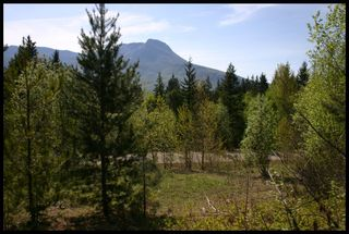 Photo 46: 21 6500 Southwest 15 Avenue in Salmon Arm: Panorama Ranch Vacant Land for sale : MLS®# 10230290