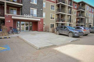 Photo 1: 217 1060 MCCONACHIE Boulevard in Edmonton: Zone 03 Condo for sale : MLS®# E4236766