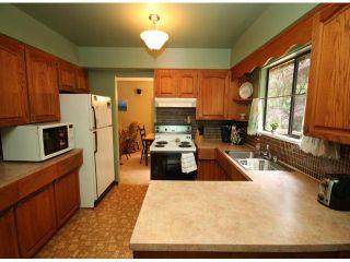 Photo 6: 10540 SUNCREST Drive in Delta: Nordel House for sale (N. Delta)  : MLS®# F1414167