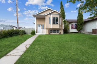 Main Photo: 23 Erin Meadows Court SE in Calgary: Erin Woods Detached for sale : MLS®# A1146245