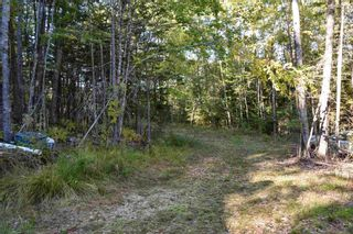 Photo 8: Lot 148 3619 Forties Road in Franey Corner: 405-Lunenburg County Residential for sale (South Shore)  : MLS®# 202125303