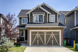 Photo 1: 97 Williamstown Park NW: Airdrie Detached for sale : MLS®# A1142238